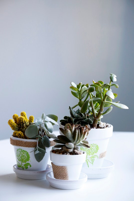 DIY Flower Pot Project