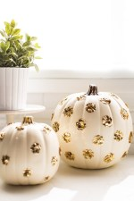 1_sequin_pumpkins