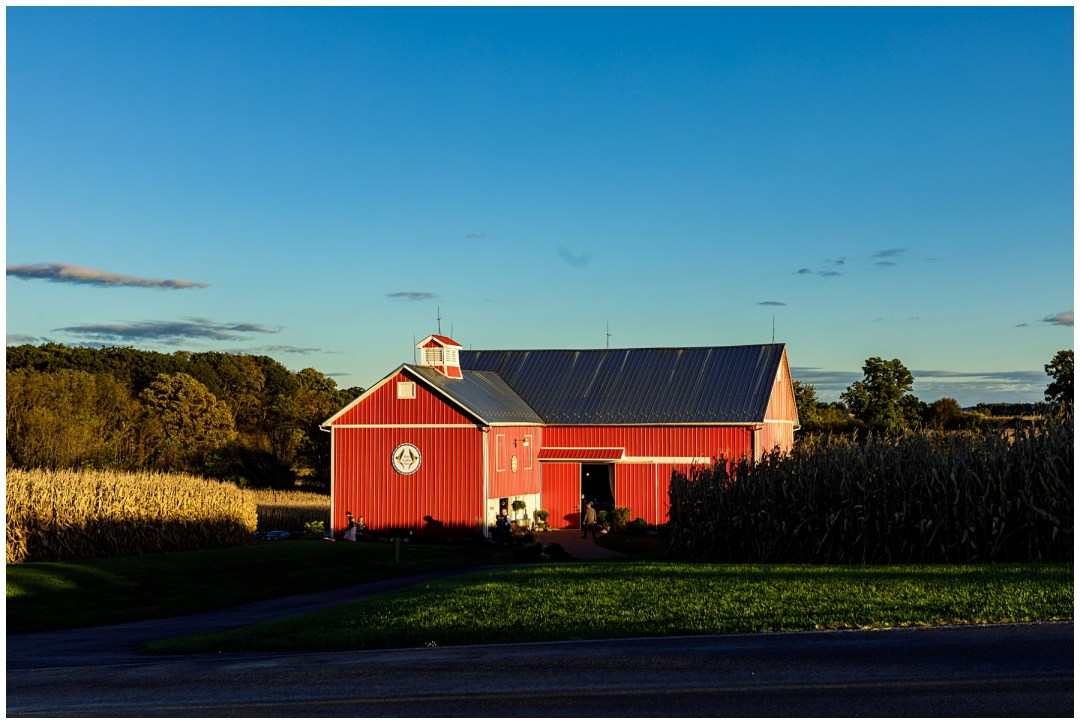 barn swallow farm in fall