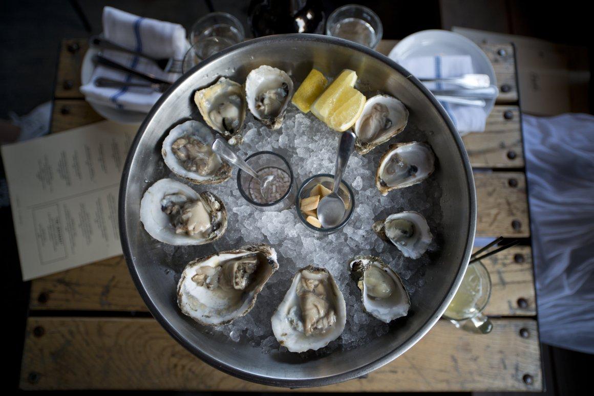 Duseks+Oysters2.jpg