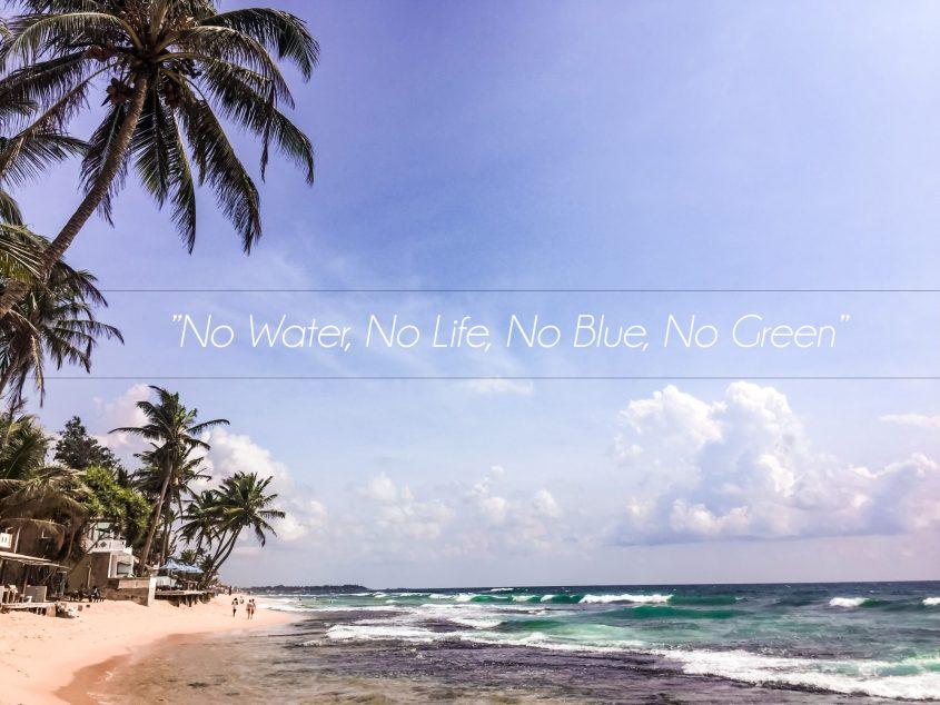 No Water No Life No Blue No Green