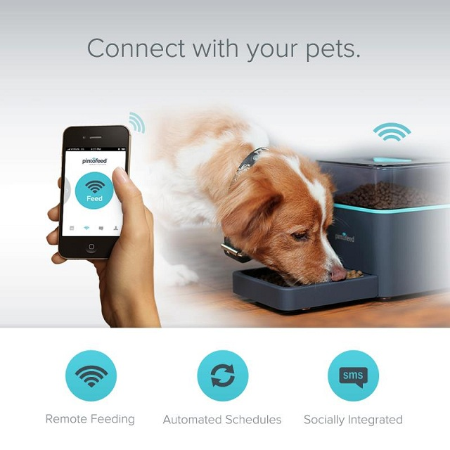 Pintofeed Intelligent Pet Feeder_2