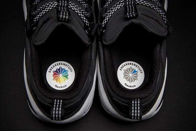 Sneakersnstuff x Reebok DMX Run 10_10