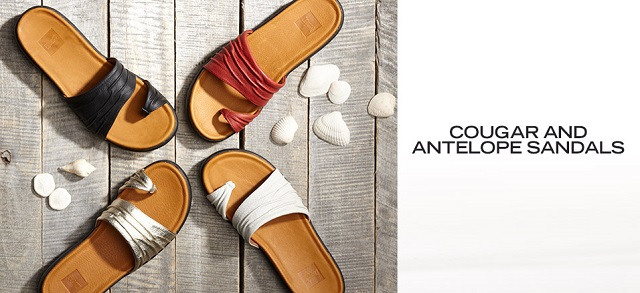 Cougar and Antelope Sandals at MYHABIT