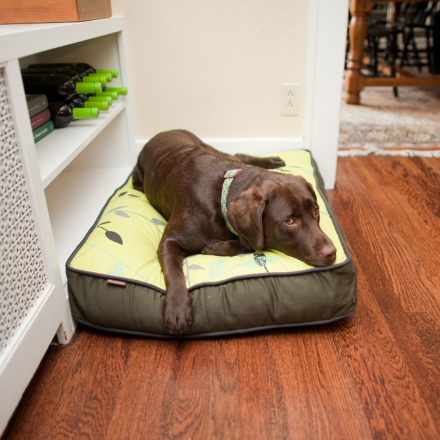 P.L.A.Y. Pet Lifestyle and You Greenery Rectangular Bed Green
