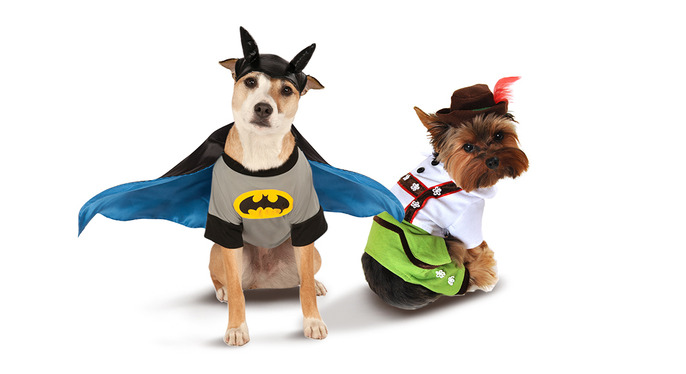 Howl-oween: Pet Costumes at Gilt