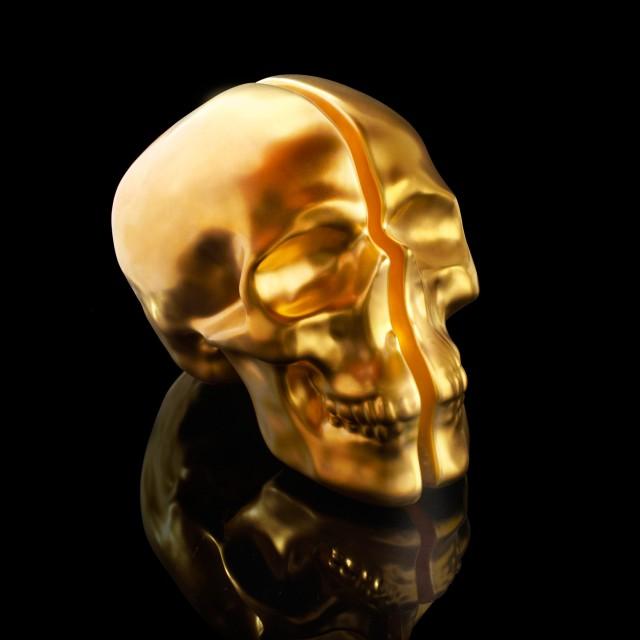 Vion Design Yorick Split Skull Lamp in gold