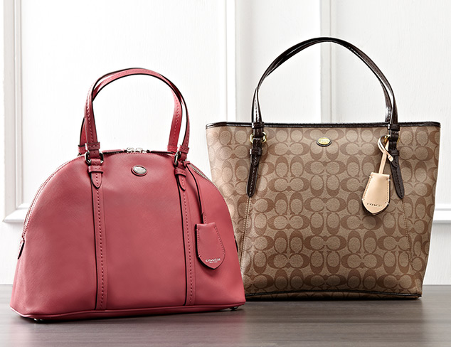 Coach Handbags at MYHABIT