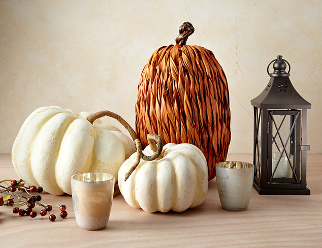 Great Gatherings: Harvest-Themed Décor at MYHABIT