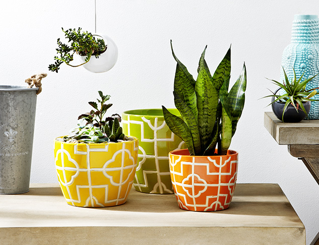 Garden Retreat: Planters, Accents & More at MYHABIT