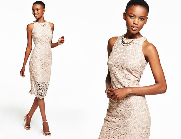 Lovely in Lace Dresses at MYHABIT