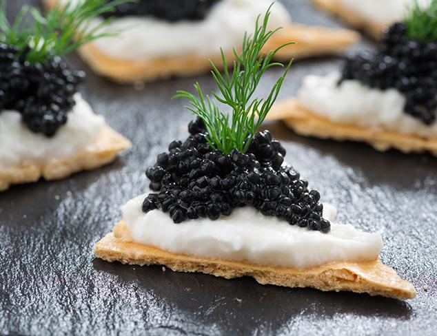 Best Of Gourmet Foods & Beverages at MYHABIT