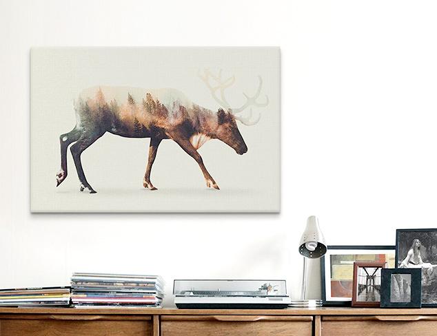 Andreas Lie Artwork at MYHABIT