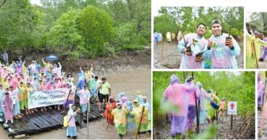 Greener in the Rain Laguna Phuket Resort Plants 2,500 Trees in a Day