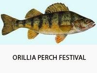 orillia-perch-festival-1