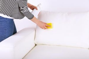 sofa couch cleaning