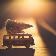 7 Eco-friendly Christmas Tips