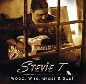 stevies album cover