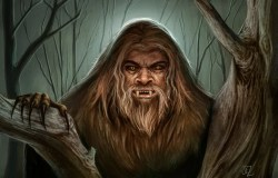 The Yowie and other cryptid humanoids