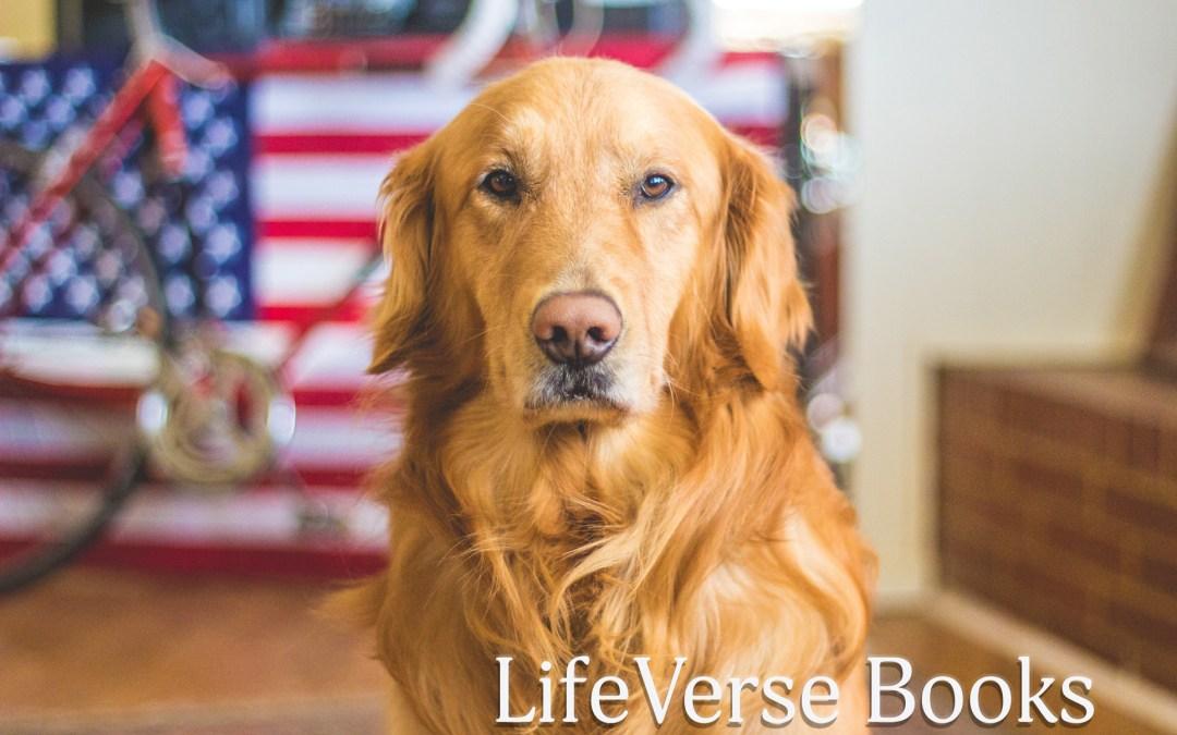 Memorial Day Inspirational Book Deals