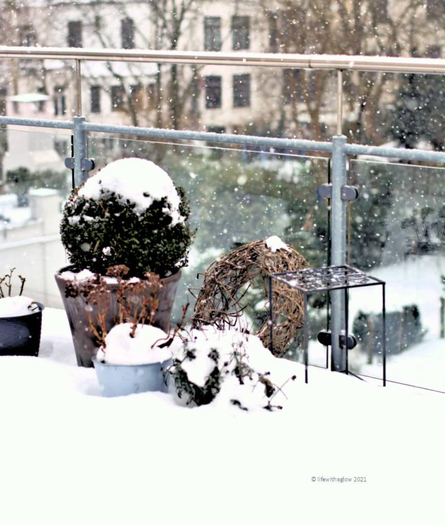 Winterwetter- ist der Schnee nicht schön?
