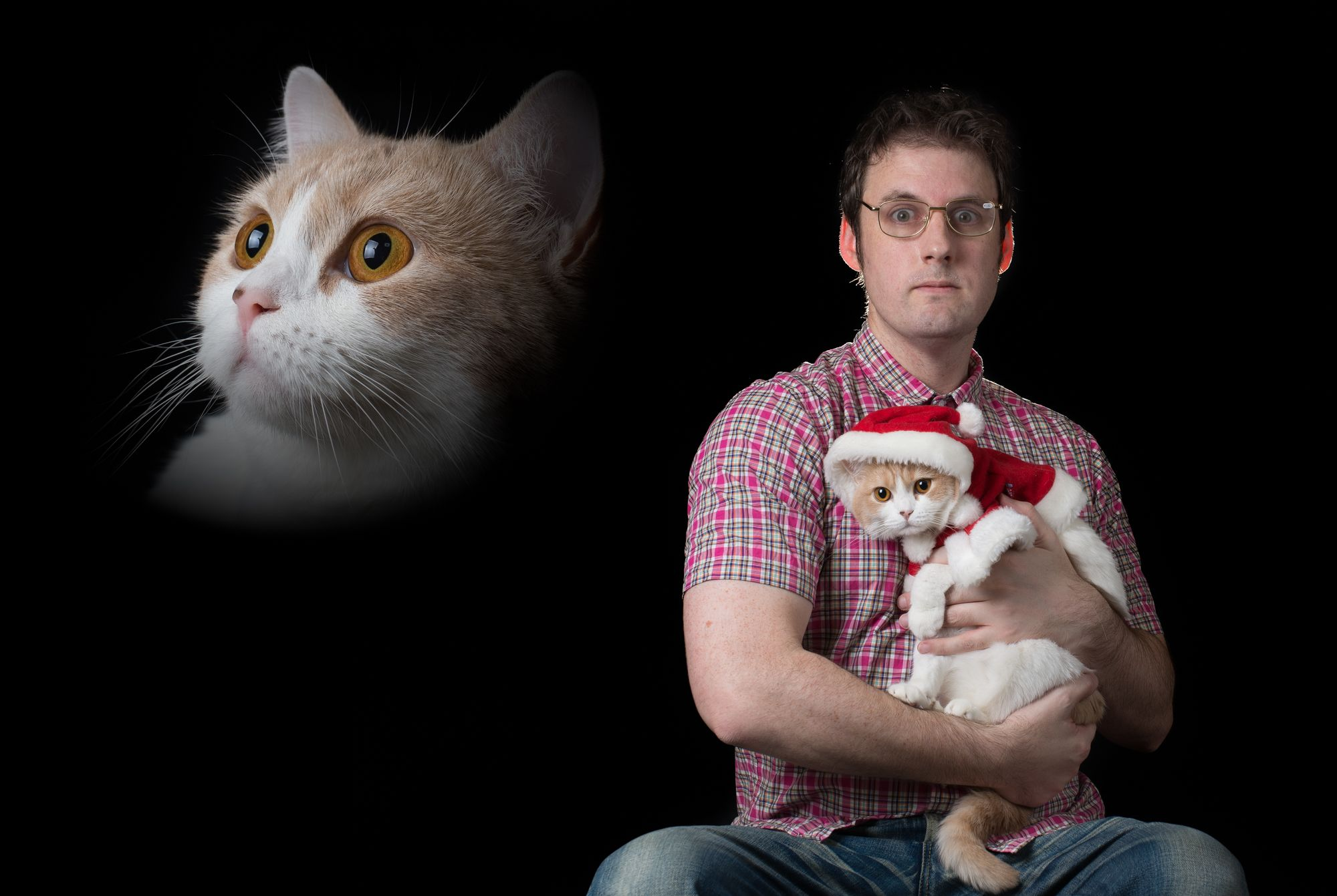 Cool Off Christmas Photos In July Life With Cats