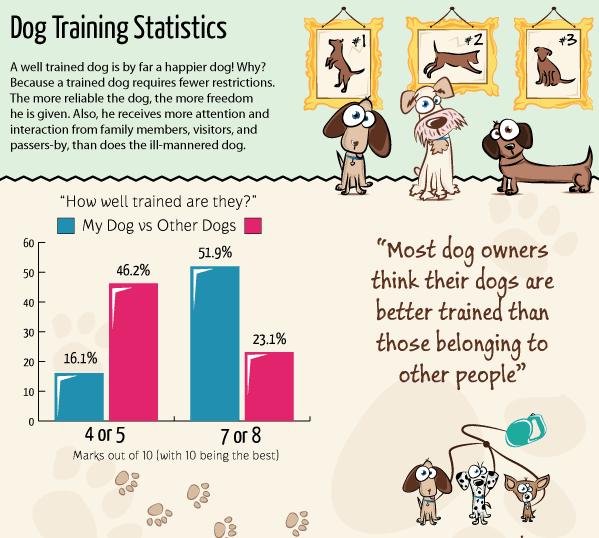 Dog Training – Explaining the Facts