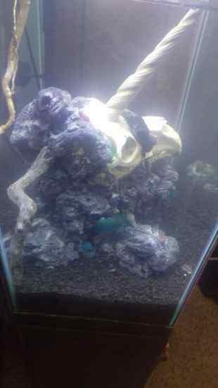 DIY foam fish tank cave unicorn