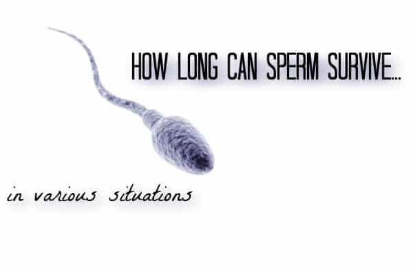 How long can sperm live out of body