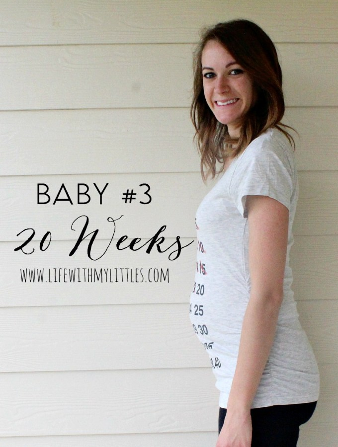Baby #3 Pregnancy Update: 20 Weeks