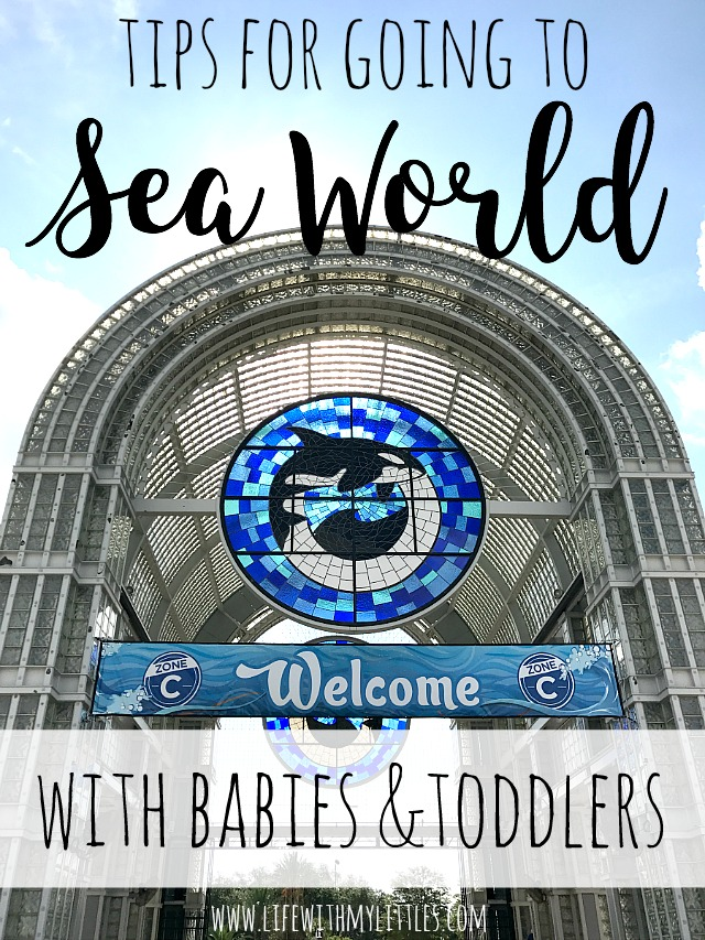 If you're planning a trip to Sea World San Antonio and will have a baby or toddler in tow, check out this helpful post all about tips for going to Sea World with a baby or toddler! So many great tips from a Sea World regular!