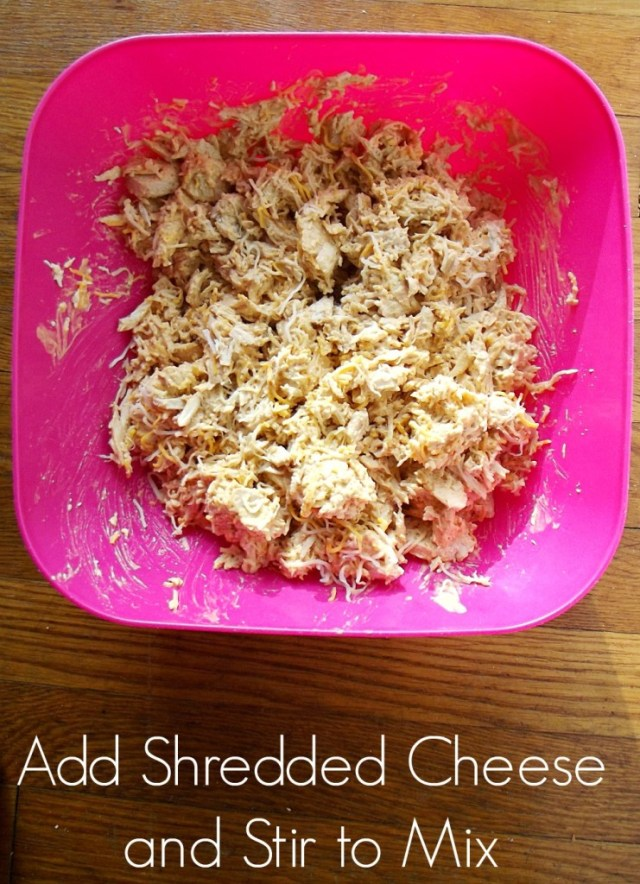Kraft Recipe Makers Chicken and Cheese #shop