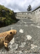 Discovering the Fort!