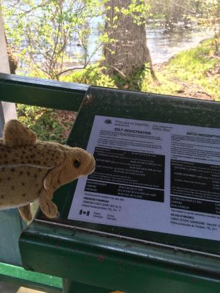 Reading the National Park Rules