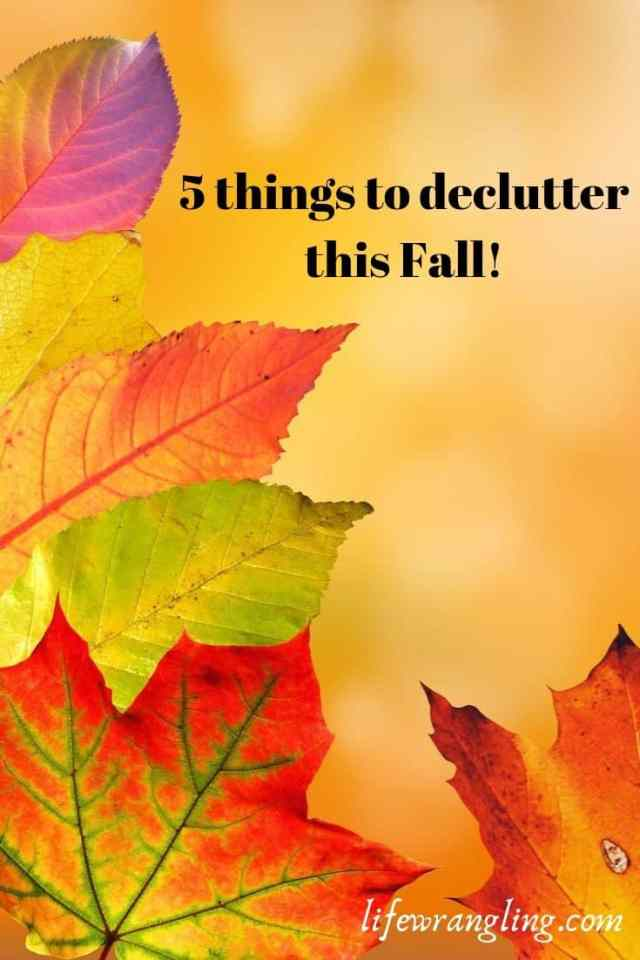 5 Steps to Remove Clutter This Fall 94