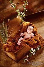 Newborns, Babyfotos, kleine Engel, Newbornfotos, mal wieder etwas aus der Newborn Fraktion ;-), Fotostudio Light-Style`s Blog