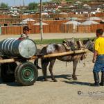 Mongolei 2003 117 - Newborns - willkommen in der Welt - portraets, newborn, kinder, babyfotos - Schwangerschaft, Newbornfotos, Kinderporträts, Kinder, Geschenke, Babyfotos