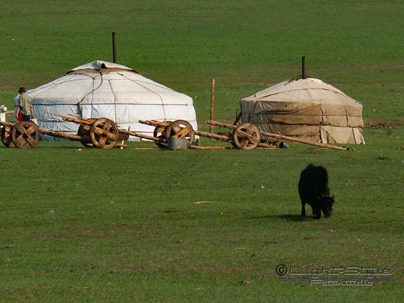 Mongolei 2003 60 - Mongolei 2003-60 - allgemein -