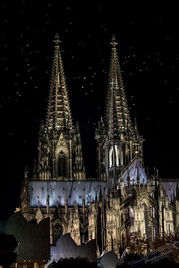 Das sind keine Sterne sondern die Kölner Tauben