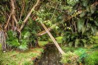 Mauritius 2018 1199 Bearbeitet 1 - Mauritius 2018-Reisebericht & Fotos - urlaubsfotos, outdoor, non-commercial, naturfotos, natur, funstuff, allgemein - Urlaub, outdoor, Naturfotos, Ein Tag im Leben eines Fotografens, Draußen, Die Geschichte hinter den Fotos