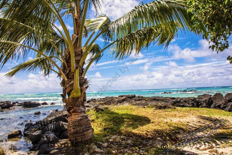 Mauritius 2018 2219 Bearbeitet - Mauritius 2018-2219 - allgemein -