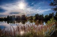 Rodenbach 2018 59 - Neues aus Rodenbach - rund-um-rodenbach, outdoor, naturfotos, natur, abseits-des-alltags - Tierfotos, outdoor, Naturfotos, Draußen, Deutschlands schöne Seiten