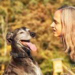 Hundeporträt outdoor 10 - Models- Tips & Wünsche - service-fuer-fotografen, modelle, fototips, allgemein - Tips, Posing, Modelle, Infos für Modelle