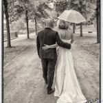 wedding12 - Fleißige Störche und die Babys - portraets, newborn, kinder, babyfotos - Kinderporträts, Kinder, Geschenke, Babyfotos