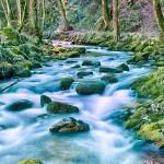 Gerolsauer Wasserfälle 62 - Bewerbungsfotos , wichtig oder blankes Beiwerk - allgemein - Infos, Businessporträts, Businessfotos, Bewerbungsfotos