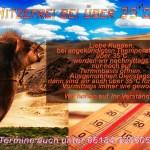 Hitzefrei über 35 Grad - 1000 neue Jobs, freut mich für alle meine Kunden im Bereich Bewerbungsfotos - rund-um-rodenbach, allgemein -