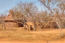Südafrika 2019 181 - Afrika - Ein Traum wurde wahr - urlaubsfotos, outdoor, offene-worte, non-commercial, naturfotos, natur, allgemein, alles, abseits-des-alltags -