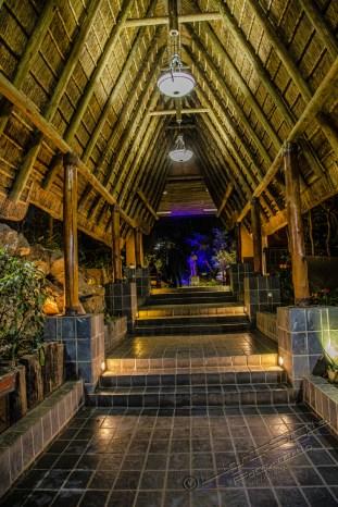 Südafrika 2019 3386 - Afrika - Ein Traum wurde wahr - urlaubsfotos, outdoor, offene-worte, non-commercial, naturfotos, natur, allgemein, alles, abseits-des-alltags -