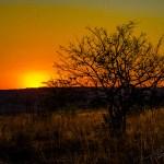 Südafrika 2019 371 - Und täglich grüßt das.................. Bewerbungsfoto ;-) - allgemein - Infos, Businessporträts, Businessfotos, Bewerbungsfotos