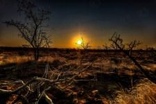 Südafrika 2019 502 - Afrika - Ein Traum wurde wahr - urlaubsfotos, outdoor, offene-worte, non-commercial, naturfotos, natur, allgemein, alles, abseits-des-alltags -